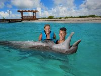 Swim with dolphins and Xenses park in La Riviera