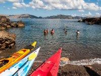 Kayaks en la costa