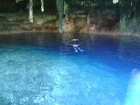 In the cenote