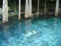 Nature of Yucatan