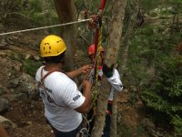 Attaching the ropes to the tree