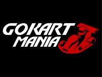 Go Kart Manía