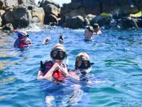 Snorkel en Piedra Pelícano