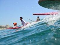 Aventurandose sobre las olas