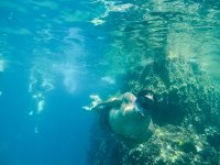 Excursion de Snorkel