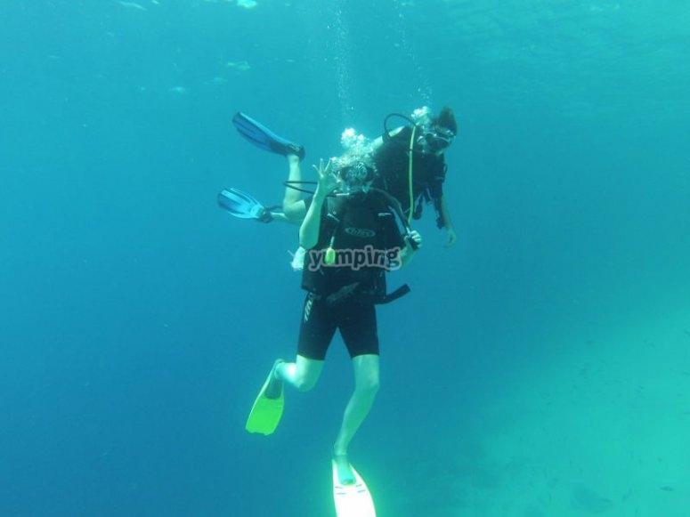 Experiencia de buceo en Los Cabos