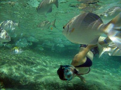 Mayan Ecotours Snorkel