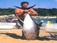 Pesca de Atun aleta amarilla