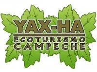 Yax Ha Cabalgatas