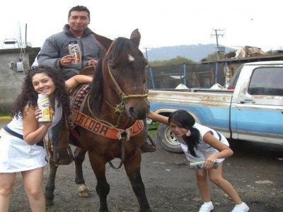 Go Karts La Marquesa Cabalgatas