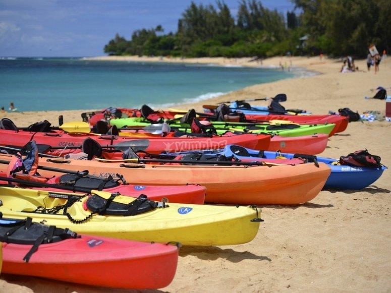 Kayaks fleet