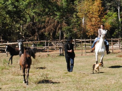 Guided horseback riding + class + snacks