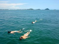 Islands Snorkeling Expedition