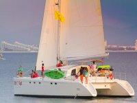 Catamaran Ally Cat