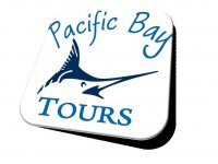 Pacific Bay Tours Wakeboard