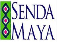 Senda Maya caminata