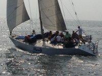 regatas, veleros