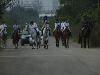 Horseback riding in group