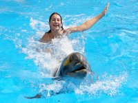 Nado y salto con delfines en Ixtapa