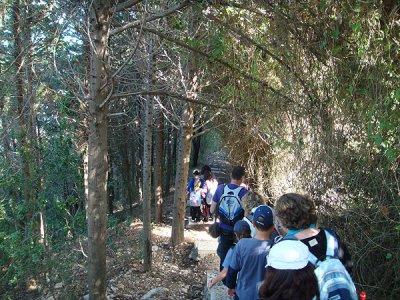 Morelos Trails Caminata