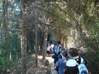 Caminata por la naturaleza