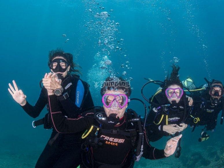Vive una aventura de buceo en La Paz