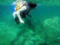 Baja Paradise Snorkel