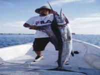 Pesca pez vela