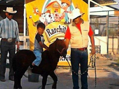 Ranchito TX Cabalgatas