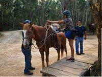 Saddling the Horse