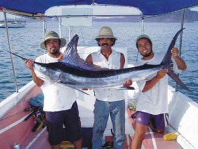 Baja Paradise Pesca