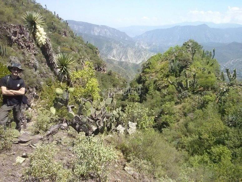 Natural sceneries