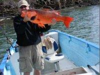 Maravillosa pesca