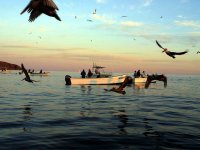 Excursion de pesca.JPG