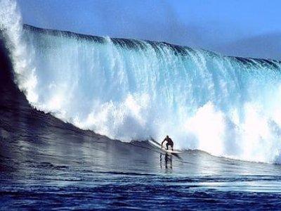 Lily's Sportfishing Surf