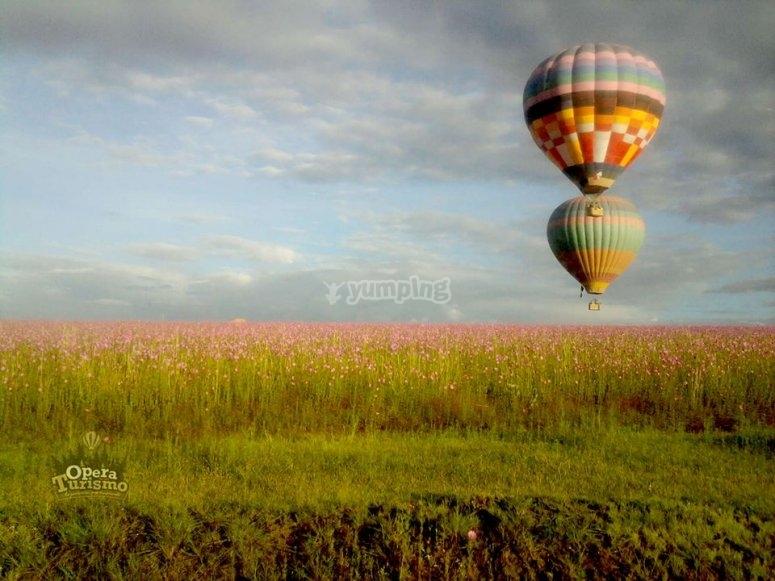 Volando en Hidalgo