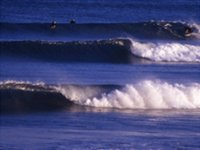 Live surf the go down