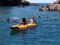 Kayaks and sea lions
