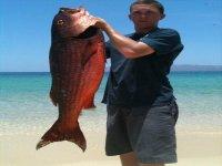 Pescando huachinango