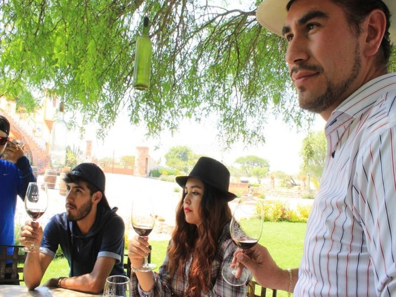 Wine tasting in Querétaro