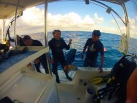 diving expedition
