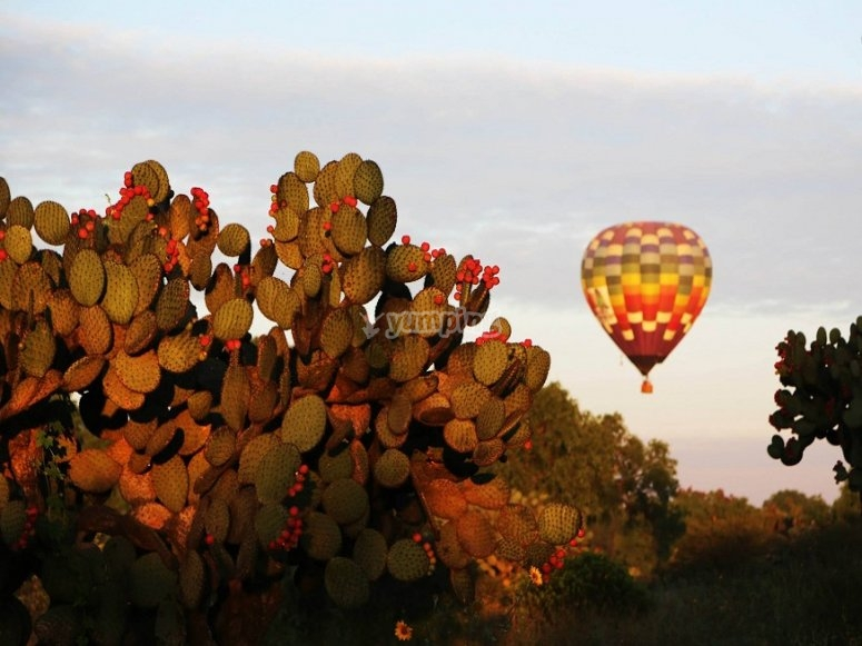 Flying in Teotihuacam