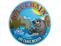 Blue Baja Canopy