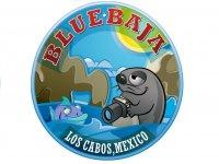 Blue Baja Cuatrimotos