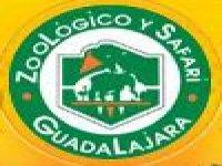 Zoológico y Safari Guadalajara Safaris