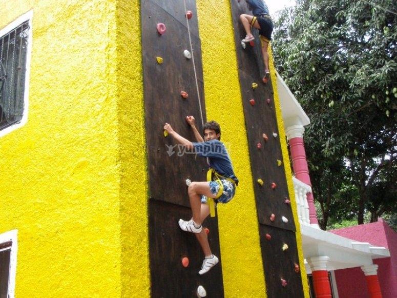 Climb up the wall