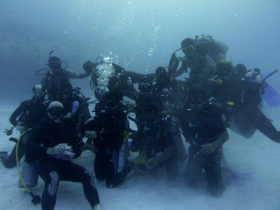 Scuba Diving, 3 days. Playa del Carmen. Arcos Pack