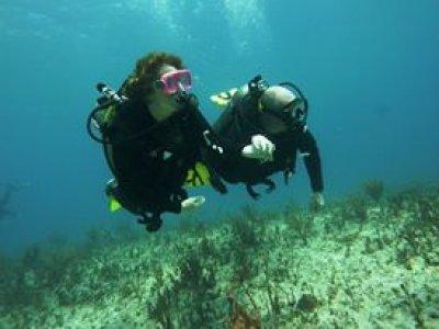 Scuba diving in reefs+ natural wells