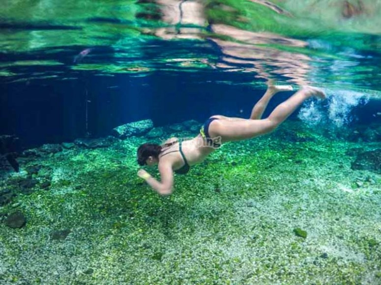 Podrás nadar en un bello cenote