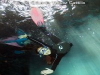 snorkeling in cenotes